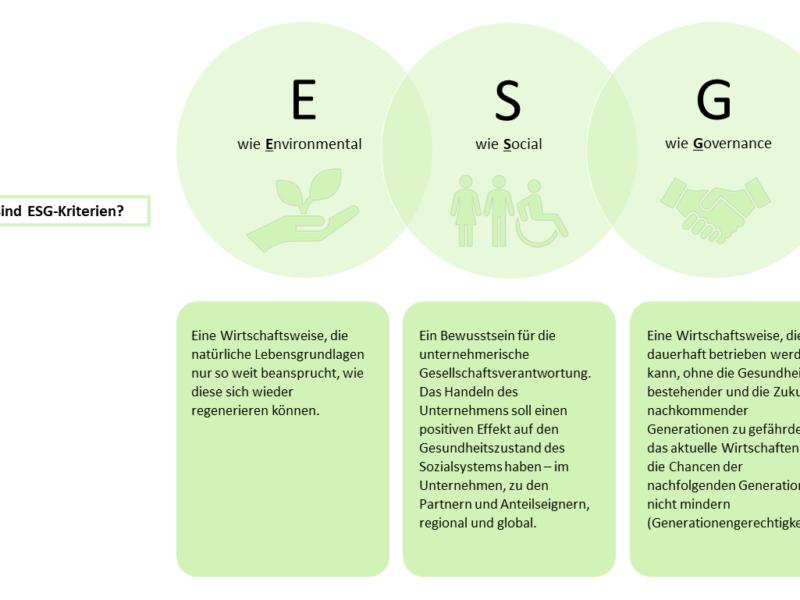 Nachhaltige Aktien – Was sind ESG-Kriterien?
